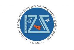 Logo_0001_logo