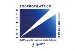 Logo_0004_logo